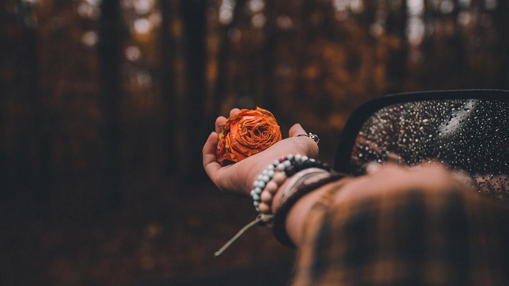 บางครั้ง ความรักไม่มีผิดถูก ไม่มีเหตุผลที่จะรักใครสักคน - ข้อคิดความรัก