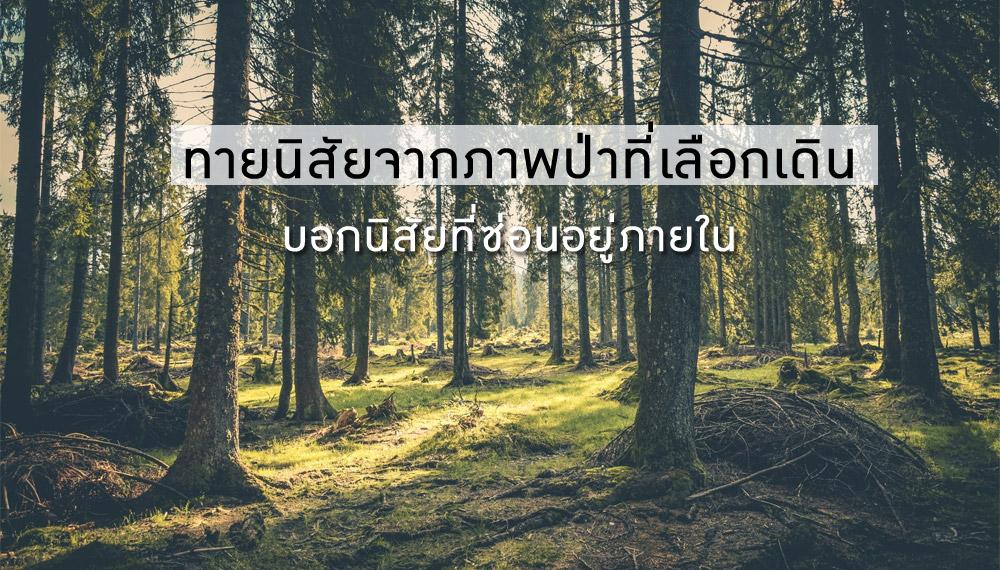 ทายนิสัย ป่า ภาพ เดิน